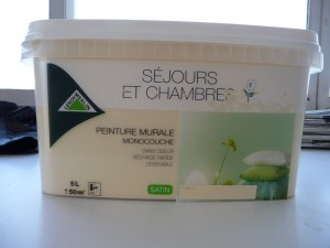 Comment repeindre son appartement d 39 une mani re cologique for Peinture eleonore leroy merlin