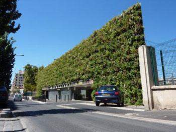 Construire un mur v g tal int rieur ou ext rieur consommer durable - Prix mur vegetal exterieur ...