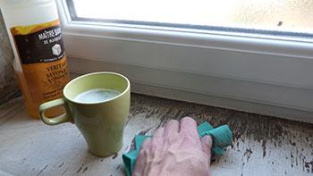 Traiter les moisissures avec des produits colos consommer for Lavage de fenetre