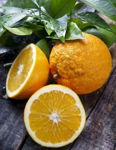 l-orange-a-longtemps-ete-le-fruit-de-la-noblesse-photo-fotolia