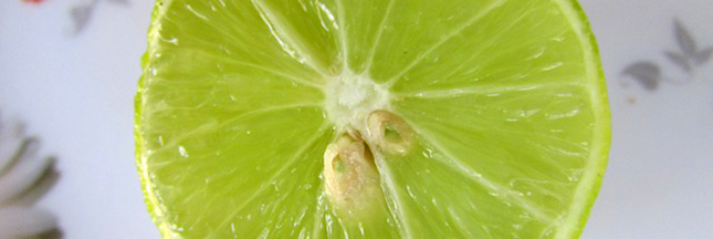 citron-vert-agrume-fruit-ban