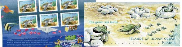 pochette-tortue-verte