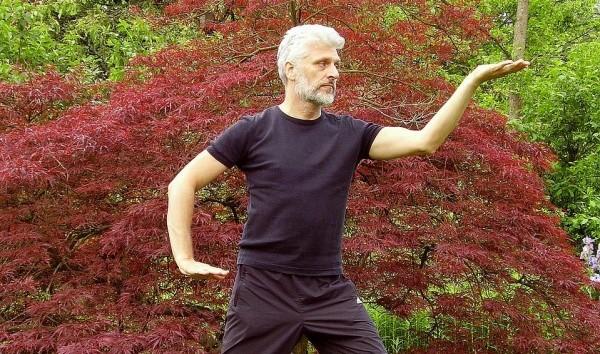 pratique tai chi chuan